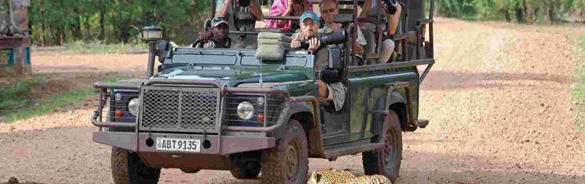 ZAMBIA A MUST VISIT AFRICAN SAFARI DESTINATION header image
