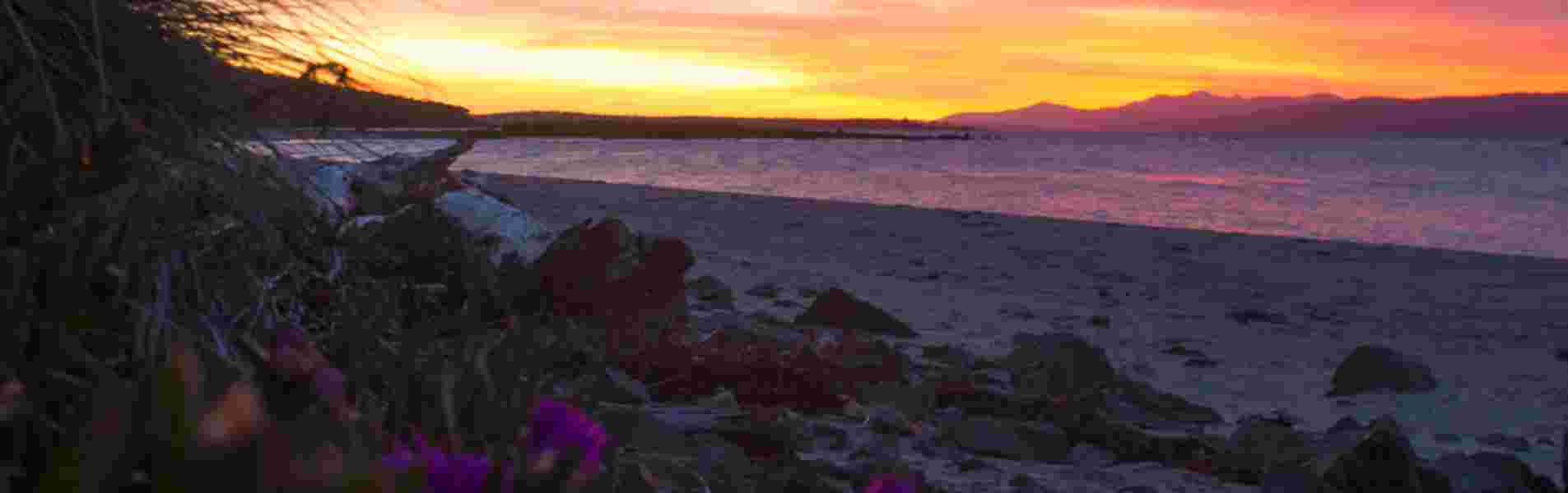 Top 10 different things to do in Tasmania header image