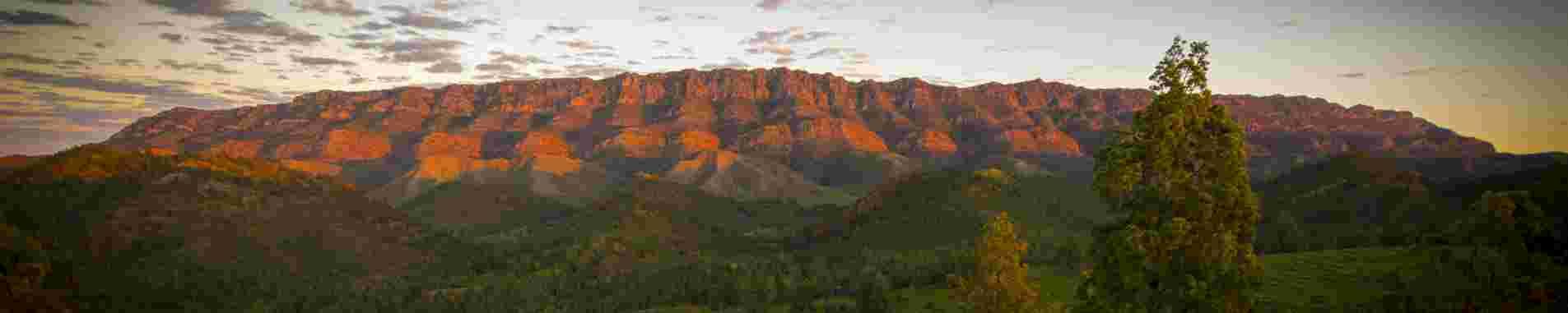 Flinders Ranges header image