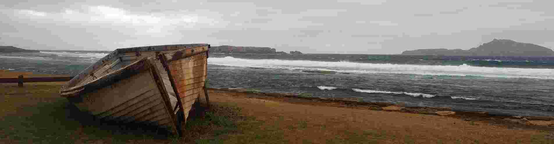 Norfolk by nature header image