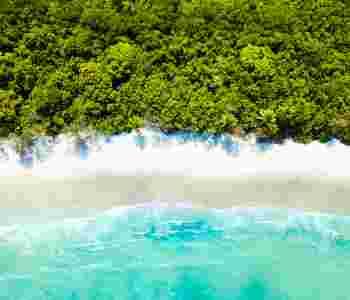 The Daintree Wet Tropics