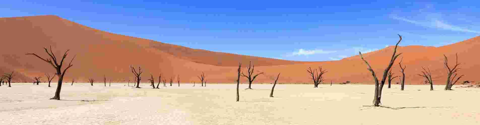 Namibia header image